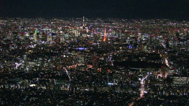 Aerial Tokyo Night View