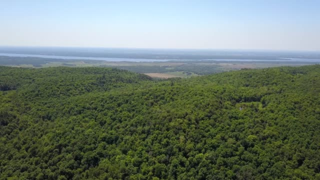 aerial top down flight over gatineau park - gatineau stock videos & royalty-free footage