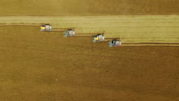Aerial top view Combine Harvester operation on the rice field.