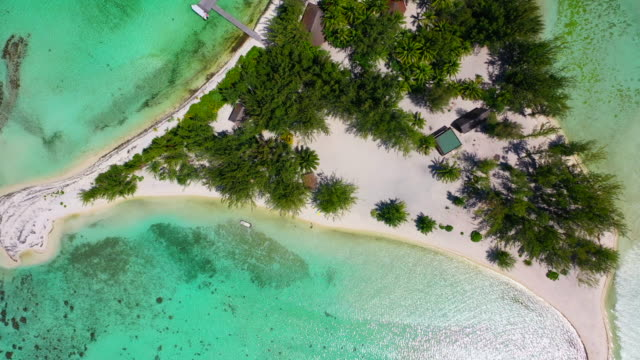 aerial top view of a small tropical island in a bright blue lagoon, drone ascending while circling from right to left - bora bora, french polynesia - bora bora stock videos & royalty-free footage