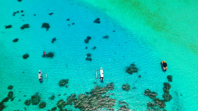 vidéos et rushes de aerial top view of boats floating on bright blue water by beautiful topical island, drone flying forward then turning from right to left towards the beach - bora bora, french polynesia - carte dom tom