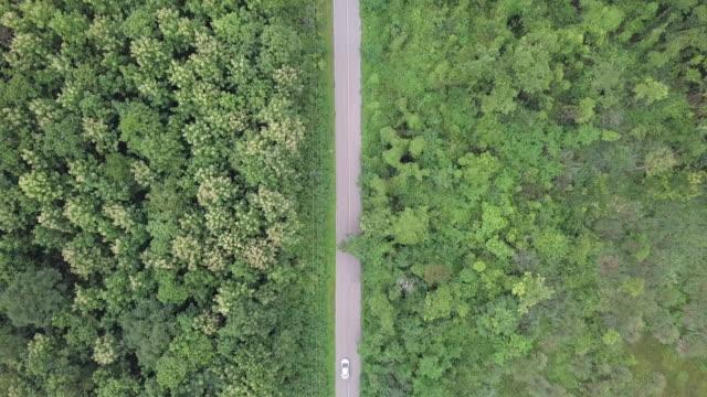 top luftaufnahme des auto vorbei autobahn im wald - ländliche straße stock-videos und b-roll-filmmaterial