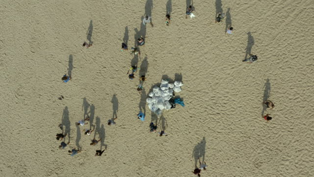 aerial top view of volunteers putting all garbage bags on one place at beach, drone flying upwards during sunny day - tel aviv, israel - beach stock videos & royalty-free footage