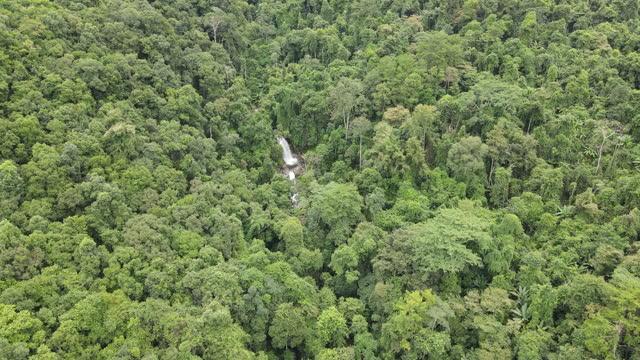 vídeos y material grabado en eventos de stock de vista aérea de waterfall en el tropical - punta descripción física