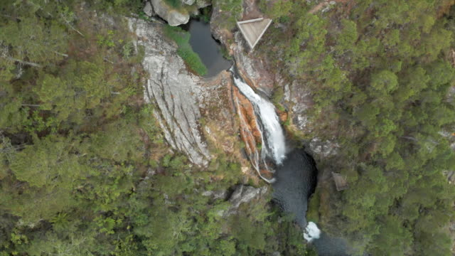 vídeos y material grabado en eventos de stock de aerial top view: scenic waterfall with viewing platform among lush green forest - hispaniola