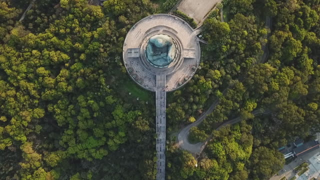 aerial top view shot of famous buddha statue amidst tourists and trees, drone flying over religious landmark - hong kong, china - on top of stock videos & royalty-free footage