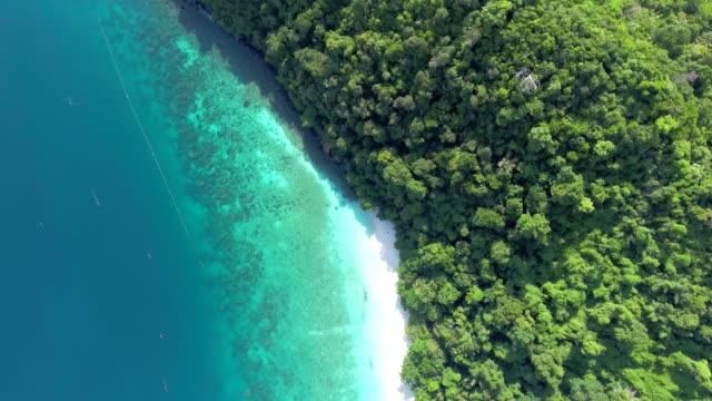 aerial top view tropical beach - desert island stock videos & royalty-free footage