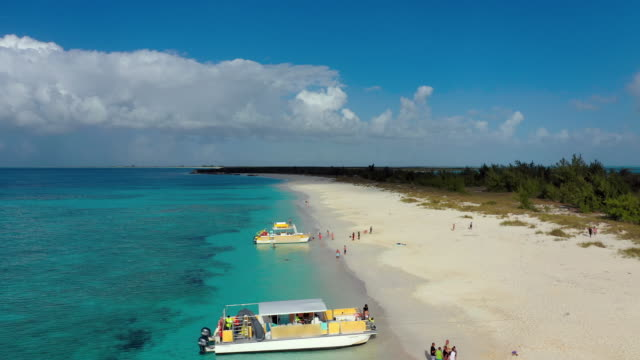 vidéos et rushes de aerial: tourists around two pontoon boats unloading on secluded tropical beach - providenciales, turks and caicos - décharger