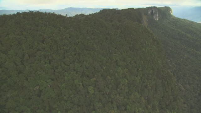 aerial track along ridge of escarpment. - papua stock videos and b-roll footage