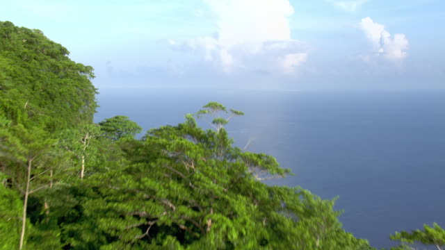 Aerial track from rainforest to ocean, Solomon Islands