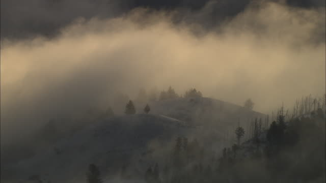 Aerial track over cloudy forested hills at sunset, Yellowstone, USA