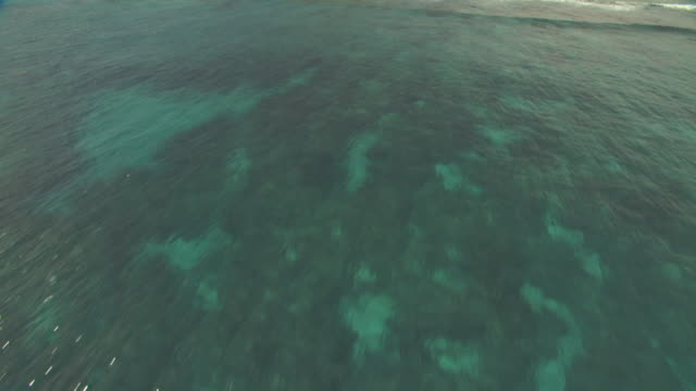 vídeos de stock, filmes e b-roll de aerial track over coral reef then swoops up over forested island before heading over blue sea.  - oceano pacífico do sul