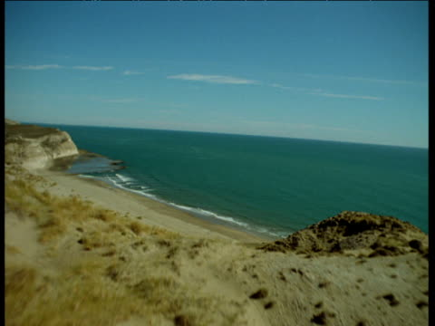 Aerial track over dunes and cliff, then out over large flock of seabirds to sea