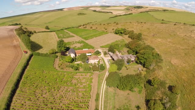 aerial track over english vineyard - sussex stock videos and b-roll footage