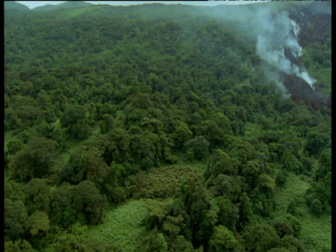 aerial track over forest to lava flow - vulkanausbruch stock-videos und b-roll-filmmaterial