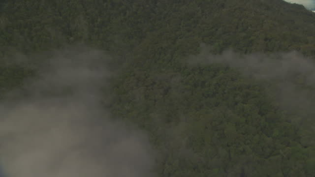Aerial track over forested hillside.