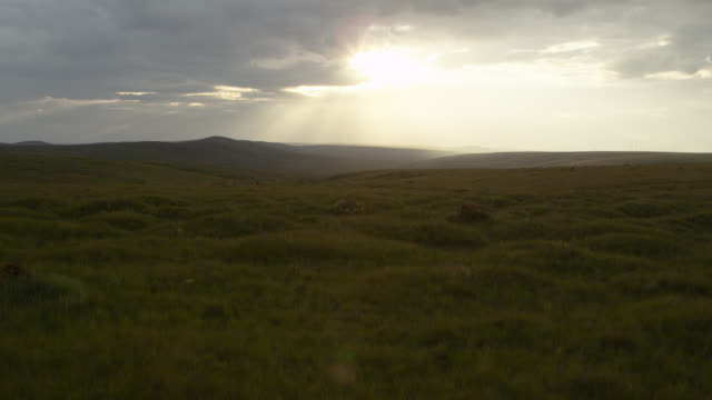 Aerial track over grasslands at sunset.