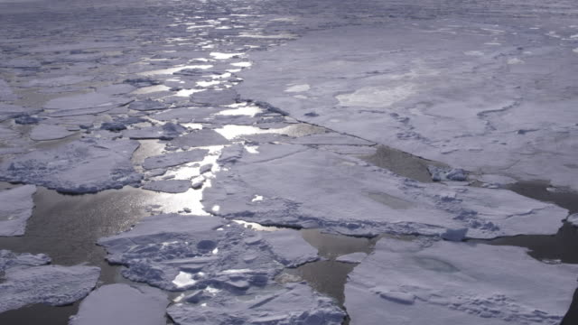 slomo aerial track over ice floes with reflected sunlight tu to reveal landscape - スヴァールバル諸島およびヤンマイエン島点の映像素材/bロール