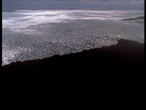 aerial track over pack ice, magdalen islands - nordatlantik stock-videos und b-roll-filmmaterial