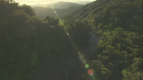aerial track over river through forested gorge then over waterfall. - pacific islands stock videos & royalty-free footage