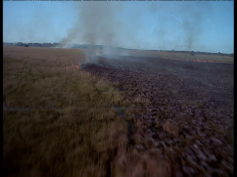 stockvideo's en b-roll-footage met aerial track over smoke and flames from burning pantanal - slagfront
