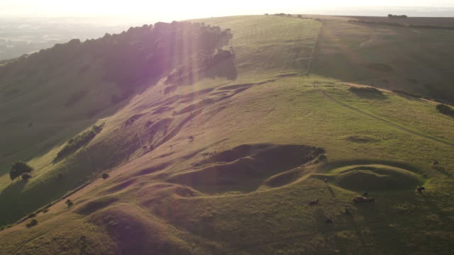 4K aerial track over South Downs hills at dawn
