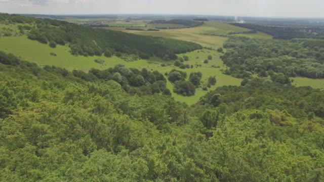 aerial track over south downs woodland in summer - サウスダウンズ点の映像素材/bロール