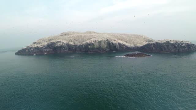 aerial track towards grassholm island - ペンブローク点の映像素材/bロール