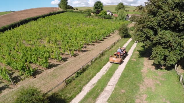 aerial track towards vineyard and tractor - sussex stock videos and b-roll footage