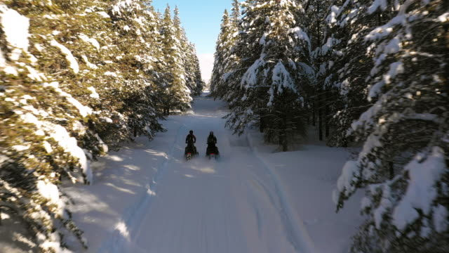 Aerial tracking shot following men riding snowmobiles on forest trail / Island Park, Idaho, United States