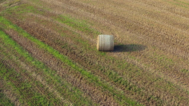 aerial tracking shot of a round straw bale in a scottish field - johnfscott stock videos & royalty-free footage