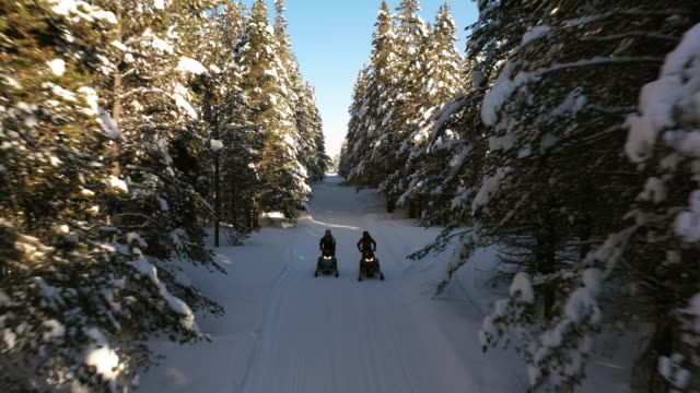 aerial tracking shot of approaching men riding snowmobiles on forest trail / island park, idaho, united states - nadelbaum stock-videos und b-roll-filmmaterial