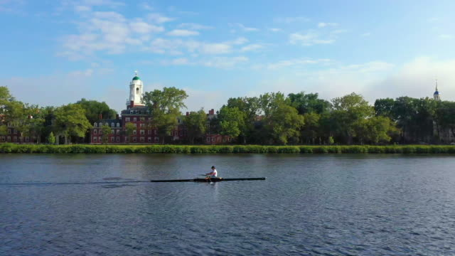 aerial, tracking shot of single sculler rowing on charles river - charles river stock videos & royalty-free footage
