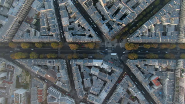 aerial: tree-lined avenue among angled city blocks in paris, france - schrägansicht stock-videos und b-roll-filmmaterial