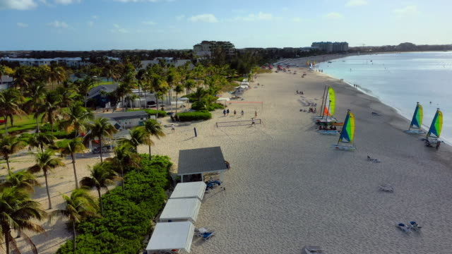 aerial: tropical beach, palm trees, resorts and tourists enjoying the sun - providenciales, turks and caicos - タークスとケイコス諸島点の映像素材/bロール