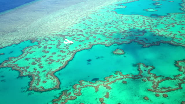 aerial tropical view great barrier reef south pacific - south pacific ocean stock videos and b-roll footage
