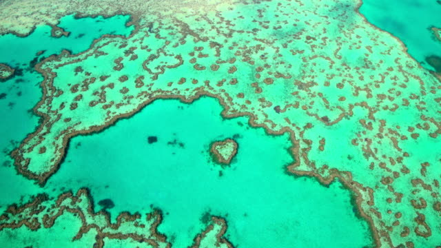 aerial tropical view great barrier reef south pacific - south pacific ocean stock videos & royalty-free footage