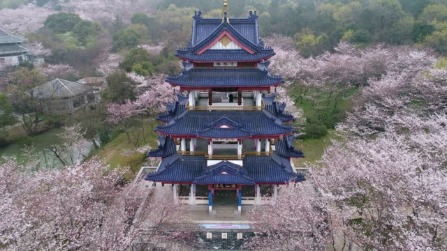 aerial turtle head isle in taihu lake in wuxi city scenic spot of the cherry blossom valley - wuxi stock videos and b-roll footage