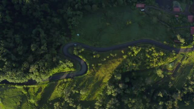 aerial: twisting road among lush green jungle - south america stock videos & royalty-free footage