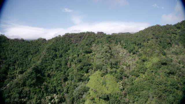 aerial up and over mountain ridge to valley, kauai, hawaii - tropiskt träd bildbanksvideor och videomaterial från bakom kulisserna