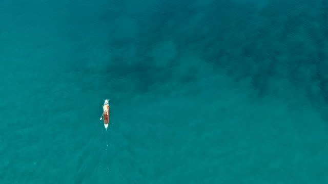 aerial vertical view- flat lay / man kayaking in canoe in quiet blue sea - kayaking stock videos & royalty-free footage