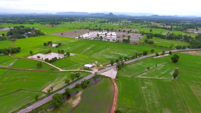 aerial video above rice terraces in a beautiful day - laos stock videos and b-roll footage
