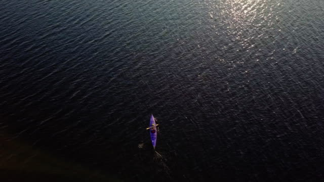 4k aerial video healthy woman kayaking at sunrise on lake - canoeing stock videos and b-roll footage