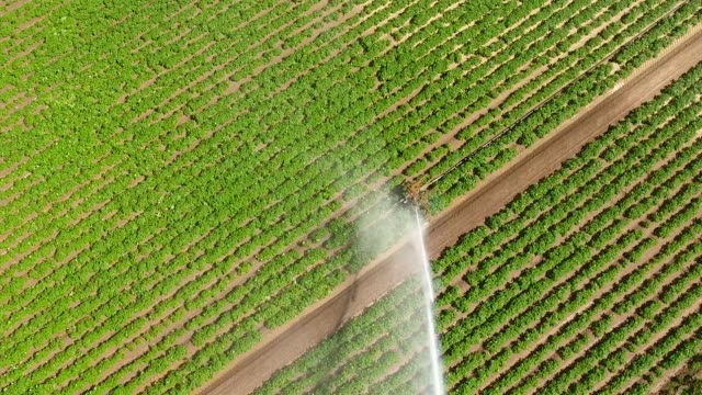 Aerial video looking directly above a crop sprinkler with a rainbow.