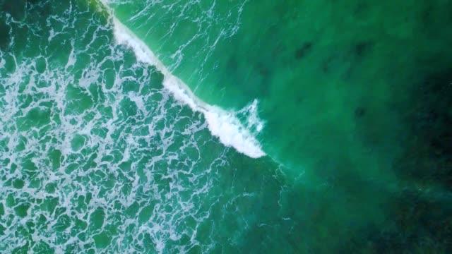 vídeos y material grabado en eventos de stock de 4k video aéreo del mar caribe las terrenas playa - antillas occidentales
