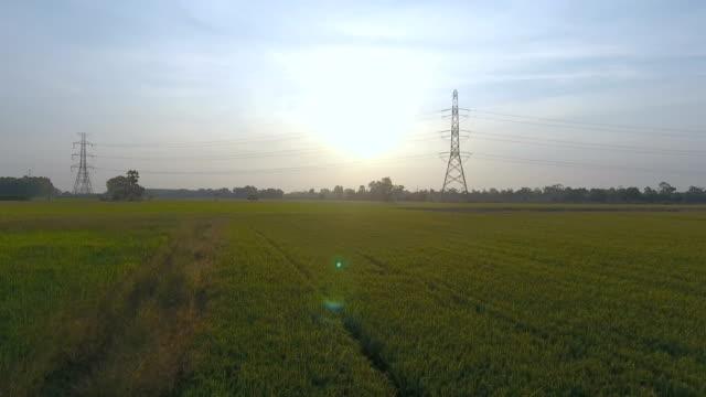 美しい日の出と田んぼの中で電力の電気タワーの空撮 - power line点の映像素材/bロール