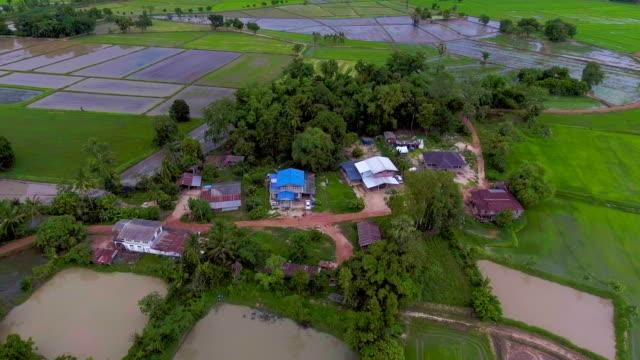 美しい日の棚田の中で住宅エリアの空撮。 - 農村の風景点の映像素材/bロール