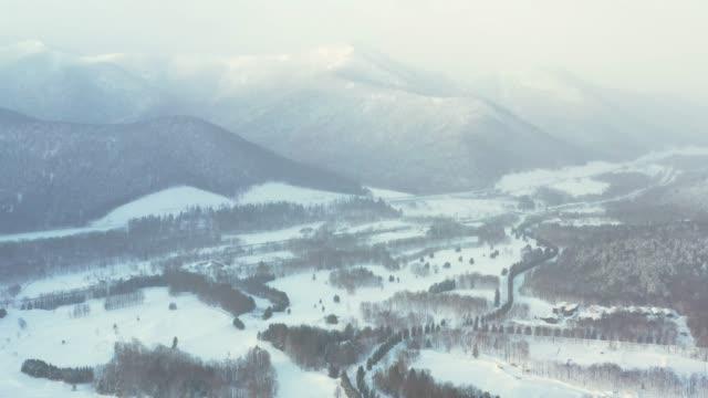 aerial video of snow forest, hokkaido, japan - ゲレンデ点の映像素材/bロール