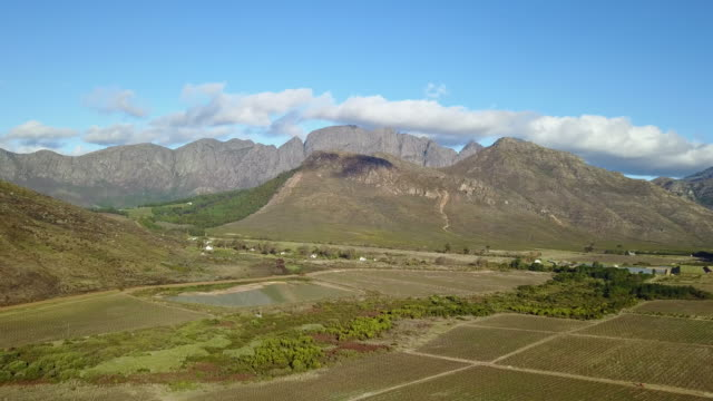 4k aerial video over vineyards - franschhoek stock videos and b-roll footage