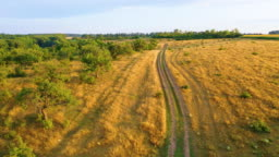 Aerial video shooting, 4k, flying over the meadow on which the grass has dried, and there is a dirt road